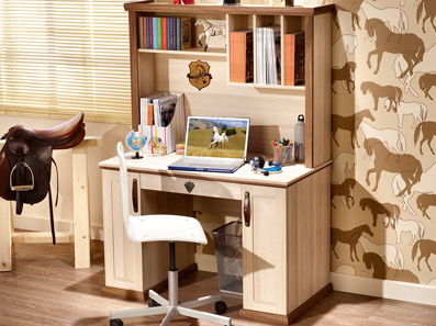 Royal Boy's Desk With Storage