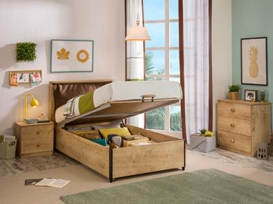 Cool Contemporary Storage Bed