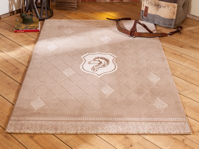 Royal Boys Room Rug